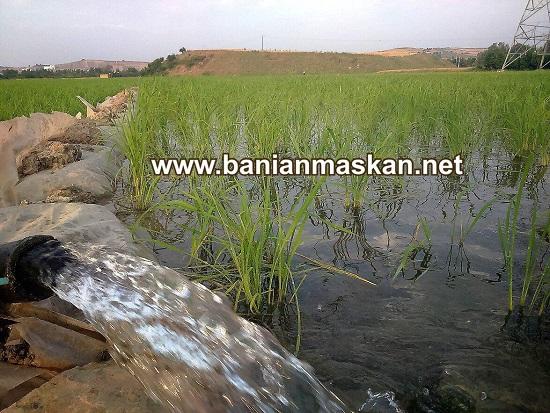 وضعیت آب آشامیدنی در مازندران منطقه ای پر از ویلا در شمال